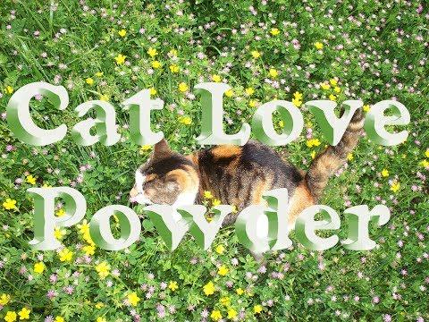 Pet Pest Powder - Natural Flea & Tick Care