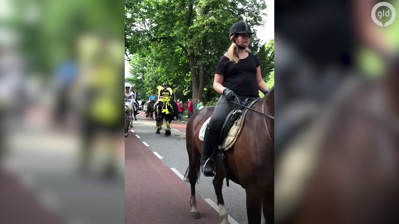 Eper Paardenvierdaagse 2018 - YouTube