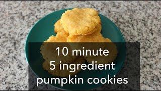 Pumpkin Cookies (gluten-free, Grain-free, Egg-free, Low Sugar)