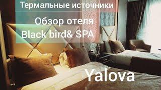 Термальные источники ЯЛОВА ОТЕЛЬ Black bird Thermal SPA ЗАСЕЛИЛИ В НОМЕР ОБЗОР ОТЕЛЯ 32
