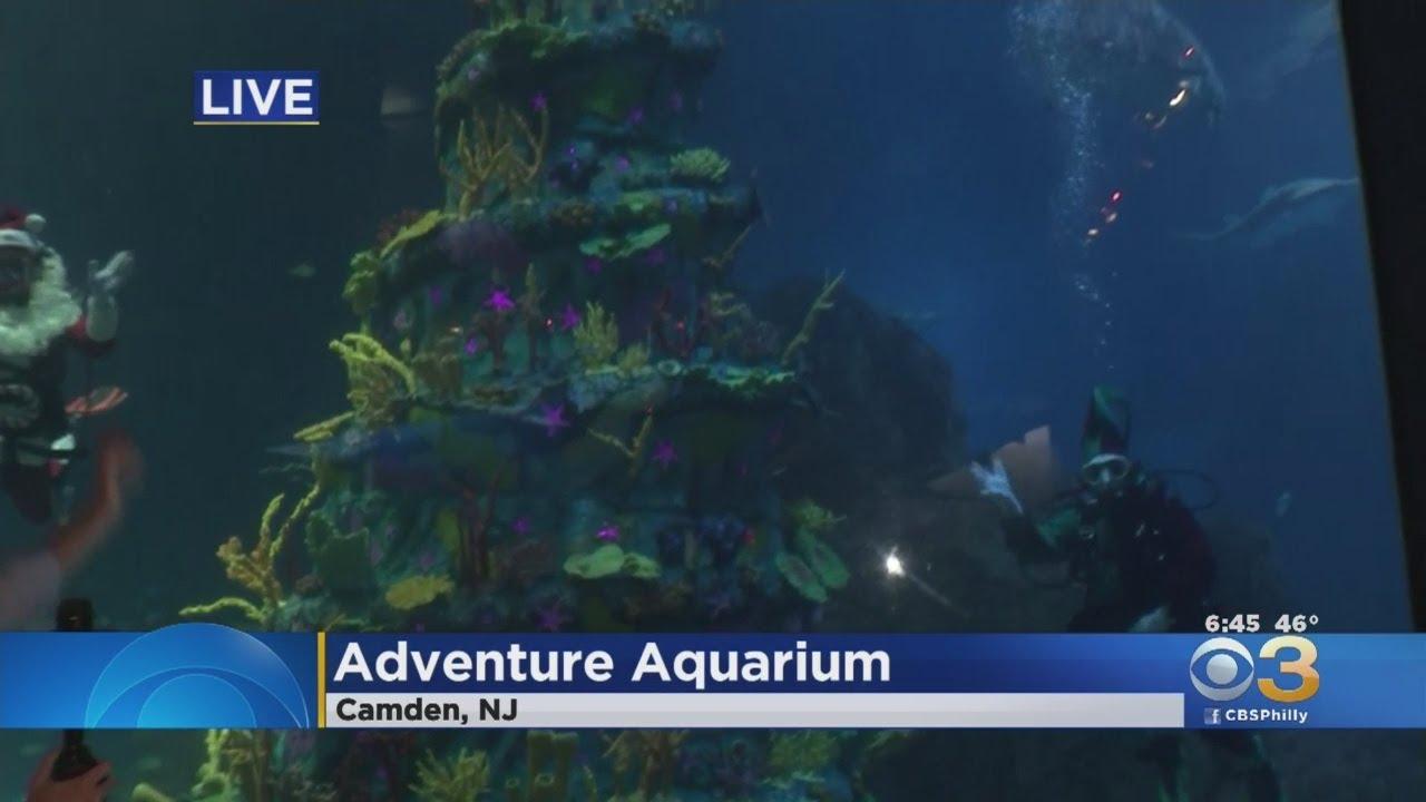 Adventure Aquarium Adds World's Largest