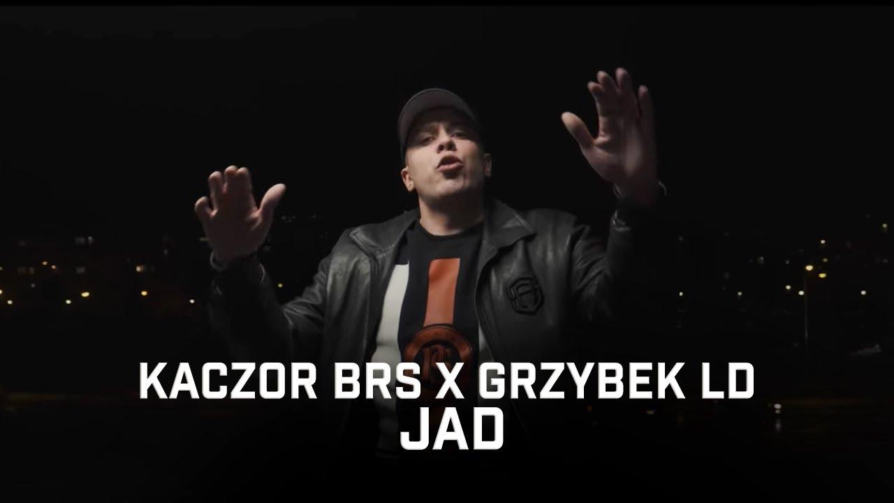 Kaczor BRS ft. Grzybek LD - Jad