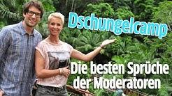 Dschungelcamp: Die besten Sprüche der Moderatoren