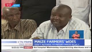 Maize farmers oppose importation of duty-free maize by government