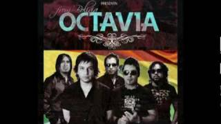 Octavia-ESPANTAPAJAROS