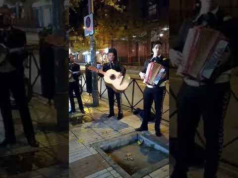 Tres mariachis pagados por Forocoches cantan 'Cielito lindo' na sede de Cs