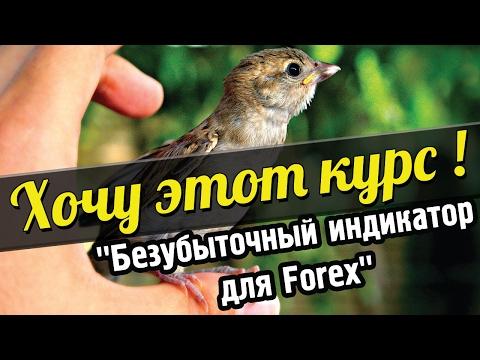 Хочу этот курс! Безубыточный индикатор для Forex и Бинарных опционов!