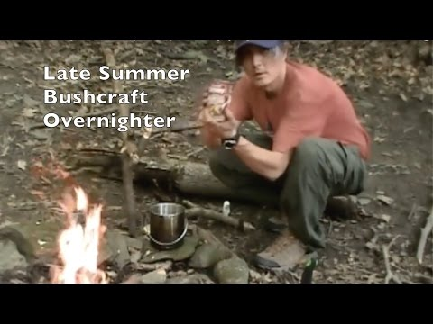 Late Summer Bushcraft Overnighter - Camp Setup And Enjoying The Forest