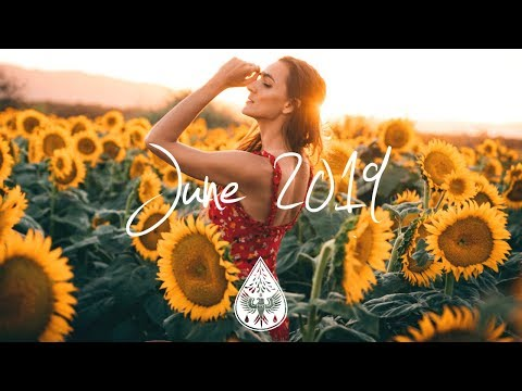 IndiePopFolk Compilation - June 2019 1-Hour Playlist