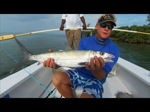 Biggest Bimini BONEFISH I have caught on the East Flats Bahamas