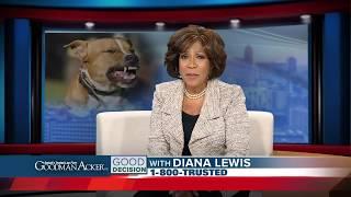 MI Dog Bite Lawyer | Diana Lewis for Goodman Acker Law Firm