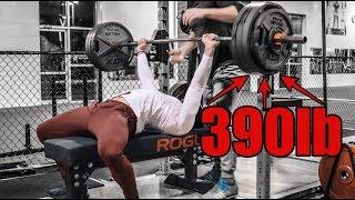 390lb Bench Press & 455lb Squat | Important Updates