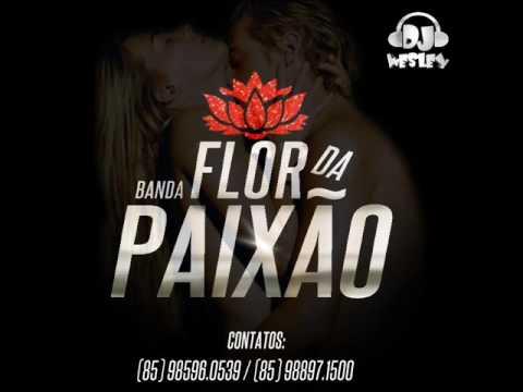 BANDA FLOR DA PAIXÃO VOL.1 - CD COMPLETO 2017