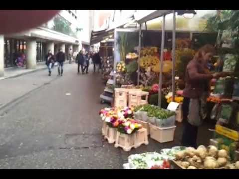 AMSTERDAM GUIDE view Flower market ( tulips )