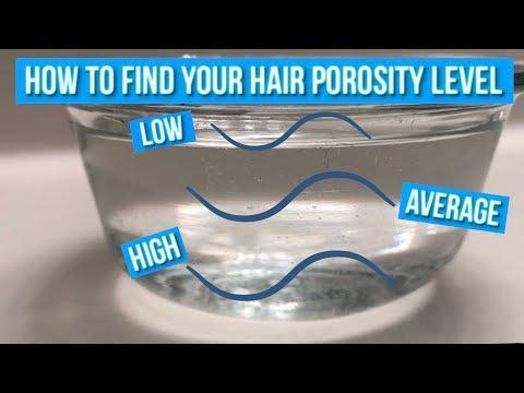 Porosity Hair Test | Jazzie Jae T
