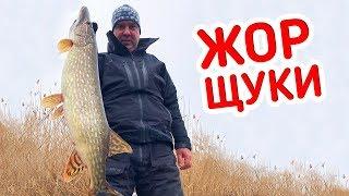 ХИТРА СНАСТЬ на щуку В СПРАВІ!!! Рибалка 2019