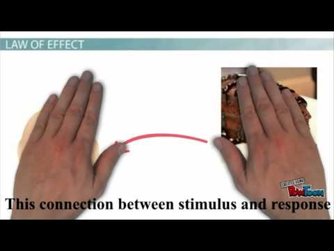 Connectionism Law of Effect