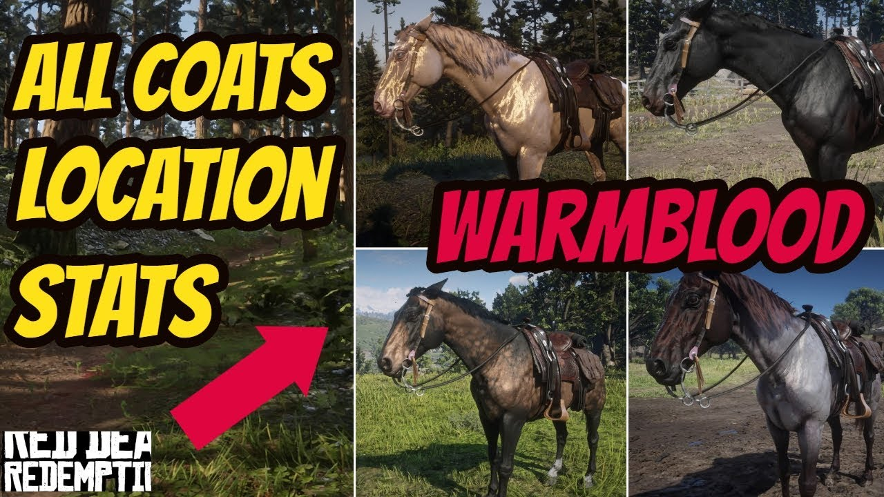 Red Dead Redemption 2 Dutch Warmblood HORSE LOCATION & ALL COATS & STATS  GOOD HORSE GUIDE by INubIsOn