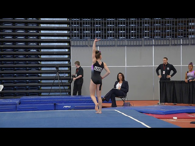 Madison Steskal   2018 L9 Eastern Championships - FX 9.250