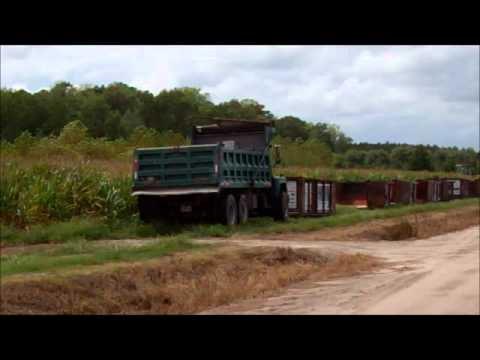 Greenbrier Farms Nursery Saving Our