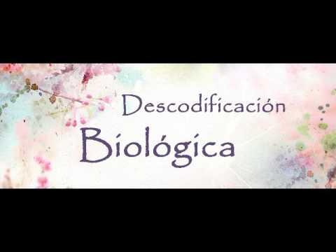 Taller ● Descodificación Biológica ● Daniel Gambartte