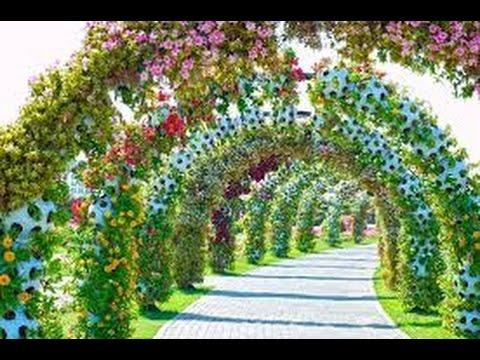 Dubai Amazing Miracle Garden Dubai