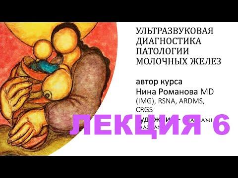 ЛЕКЦИЯ  6. BI-RADS - ПРОСТО О СЛОЖНОМ.