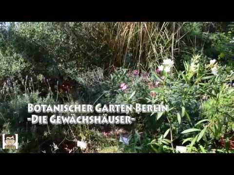 Botanischer Garten - Die Gewächshäuser