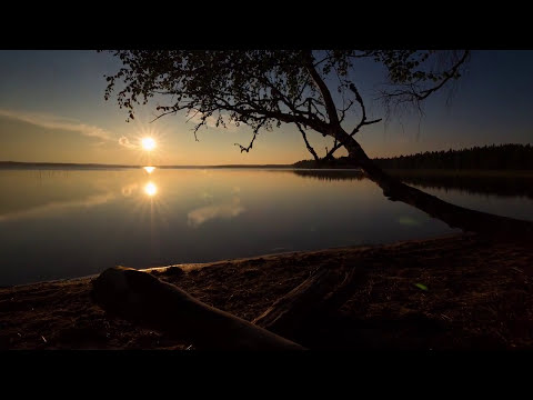Gift of Light - Nadama & Shastro - Reiki Offering