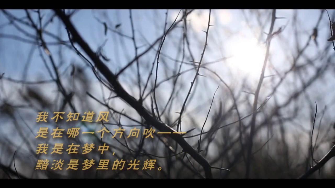 我不知道风_《我不知道风是在哪一个方向吹》徐志摩 - YouTube