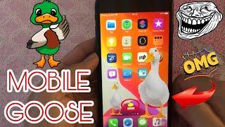 Cách cài vit chạy trên màn hình iphone l MobileGoose Tweaks iOS 13 3 Jailbreak