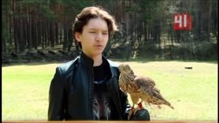 Как приручить крылатого охотника?