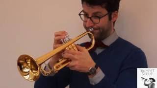 TrumpetScout Trompetentest: Yamaha YTR 3335