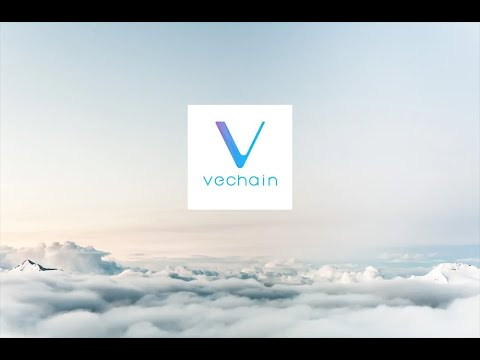 Vechain(VET) needs to have an online summit this year