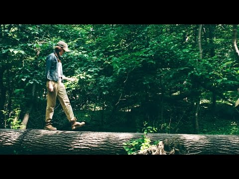 Conscious Films – Sustainable Wood Mill, NY Heartwoods – H&M Life
