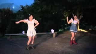平成25年8月13日(火)鳥取県の「とっとり花回廊」で行われました サマー...