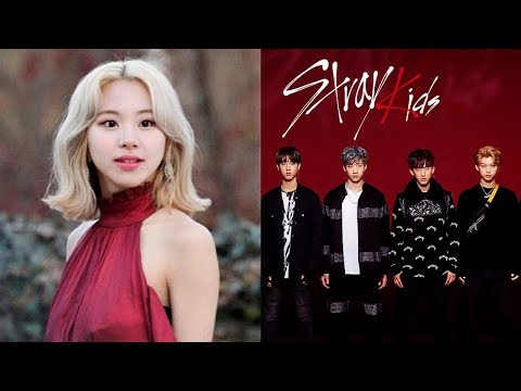 Chaeyoung&39;s Gives Therapy Stray Kids Boycott