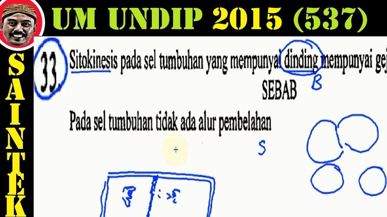 UM UNDIP 2015 Kode537, Biologi, Pembahasan No 33
