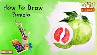 POMELO FRUIT |How to draw Pomelo fruit  | Drawings & Paintings for school children|little soldiers