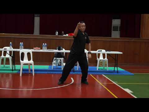 Silk Reeling Foundation - Essential part of Tian Cai Training System - Chen Tai Chi (Perth)