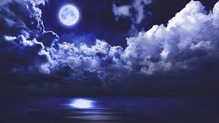 Sleep Music 24/7, Calm Music, Relaxing Sleep Music, Meditation Music, Spa, Study Music, Sleep, Zen