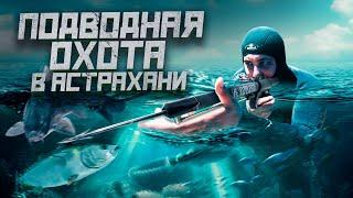 УДАЧНАЯ рыбалка в Астрахани Встреча с ПАРТНЕРАМИ ПОДВОДНАЯ ОХОТА
