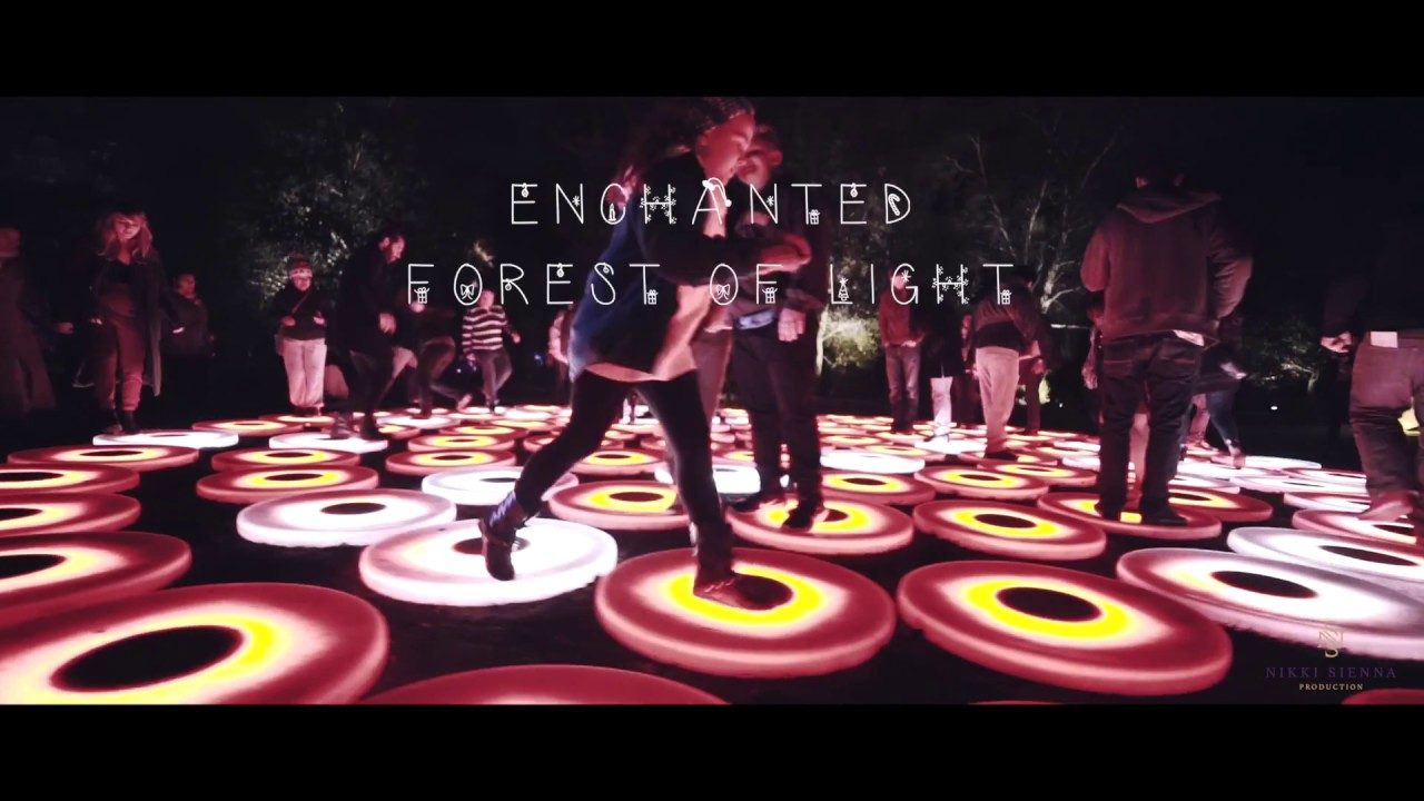 Descanso gardens enchanted forest of light zhiyun crane - Descanso gardens enchanted forest of light ...