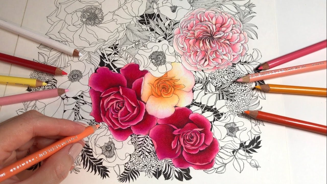 ROSE COLORING / DRAWING   Rose Garden - Part 3: Floribunda Coloring ...