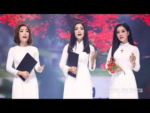 Lk Ba Tháng Tạ Từ - Thúy Huyền, Thúy Hằng, Thanh Hồng | Nhạc Vàng Bolero ĐÁNG NGHE NHẤT