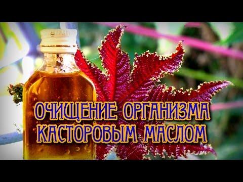 Шанк Пракшалана (техника очищения организма) » Мидгард-Сваор