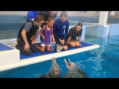 Mayra Meets Winter & Hope and Gets Surprise Visit from Dolphin Tale Stars
