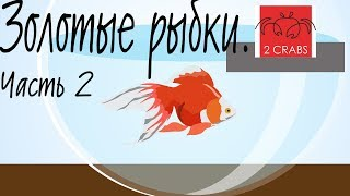Золотые рыбки  Условия содержания, уход и кормление