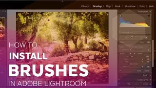 How To Install Brushes in Adobe Lightroom