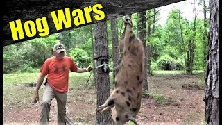 Hog Wars | Wild Hogs Are Destroying Our Farm!  Payback Time!